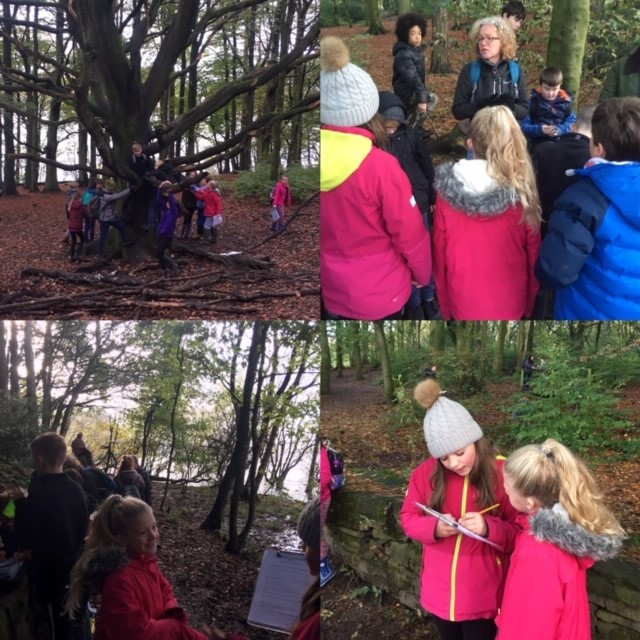 Yr5 & 6 Science in the environment